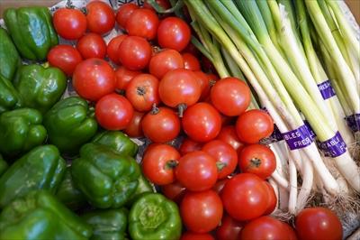美味しい野菜に出会える!! 都内で作られた新鮮な野菜が買える人形町マルシェ